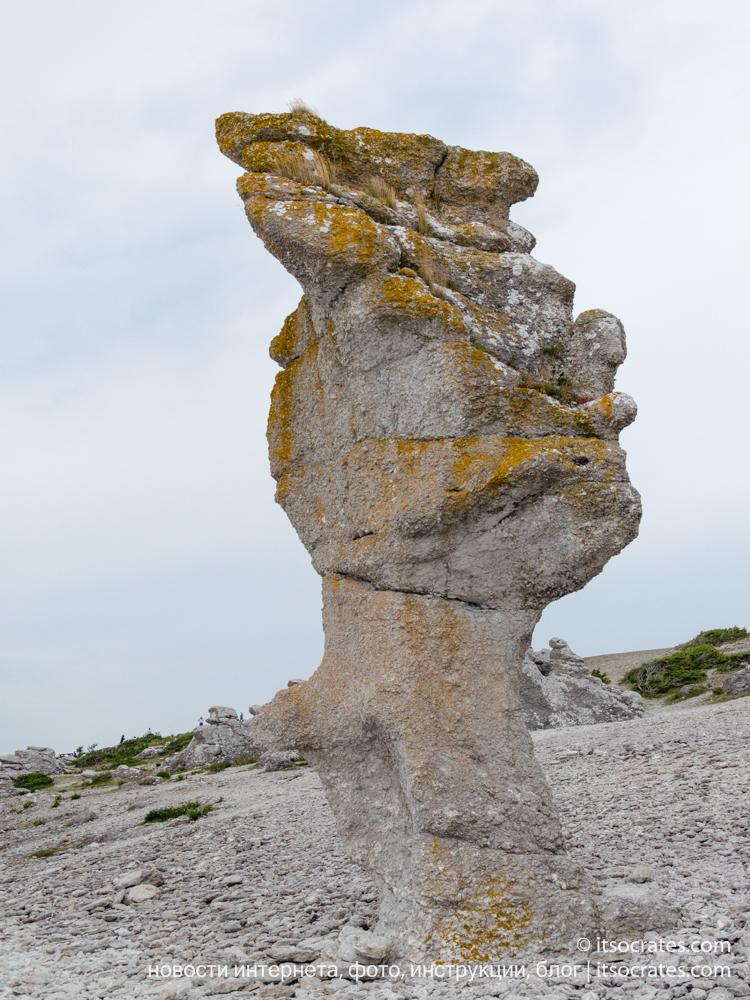Остров Форё рядом с островом Готланд - каменный раукар в виде лица Дональда Трампа