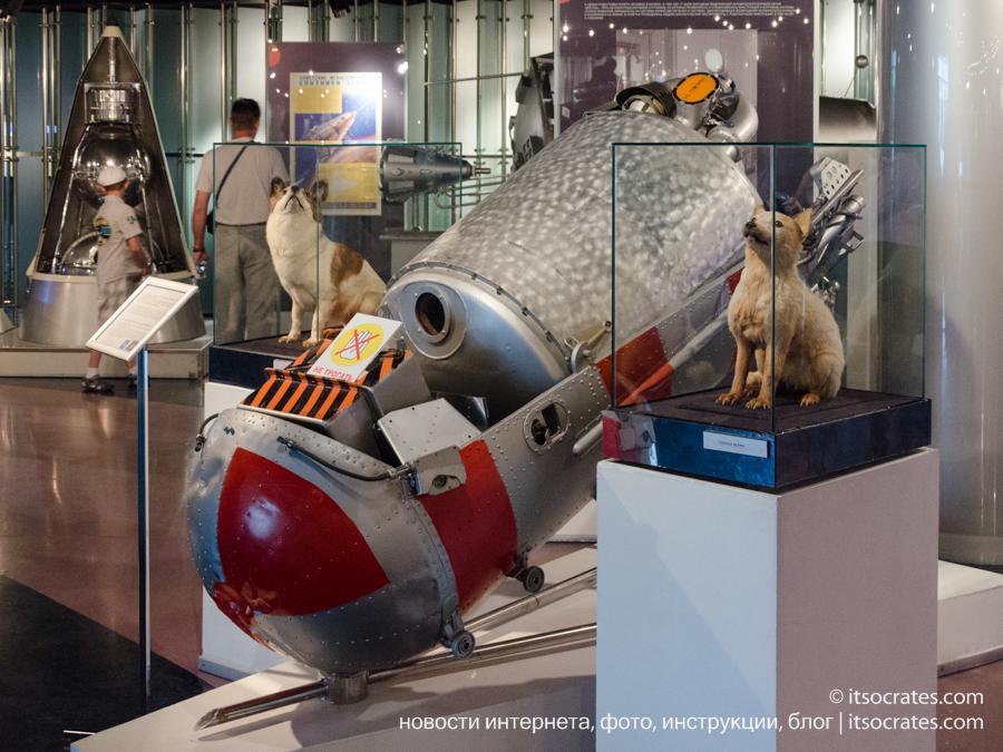 Музей космонавтики в Москве - Белка и стрелка